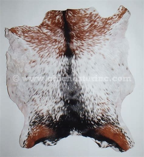 Goatskins and Goat Skins and Decorative Goat Skins and