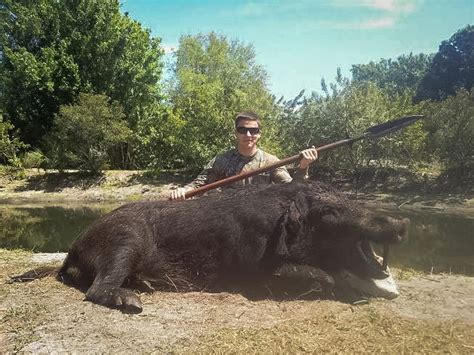 Gallery | Alligator Alley Outfitters