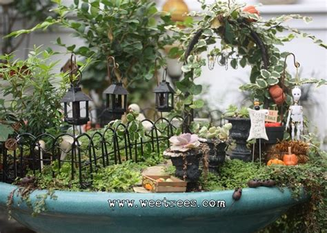 17 Best images about Halloween Fairy Gardens on Pinterest