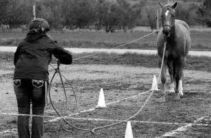 Equifeel - Coaching - Vaulcuse - A cheval vers soi